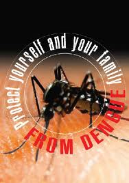 HEALTH ALERT ON DENGUE FEVER