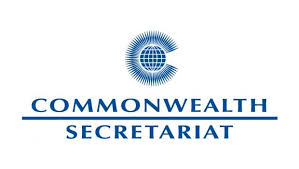 Commonwealth Observer Mission election report's findings