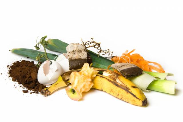 45% of compostable waste go to landfill