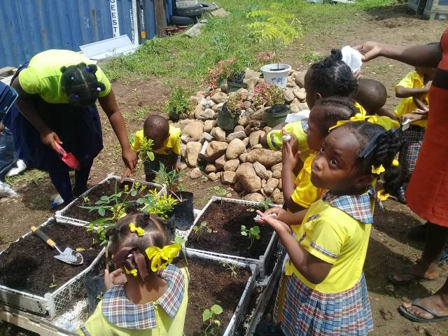 JA Dominica Launches Grow Project