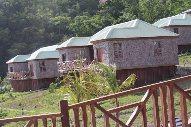 Dominica Vibes News | Dominica news source of local and caribbean news